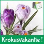 KROKUSKAMP kleuters - 28/02 t/m 04/03/2022 (VOLLEDIGE DAGEN)